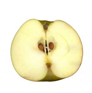 apple-core